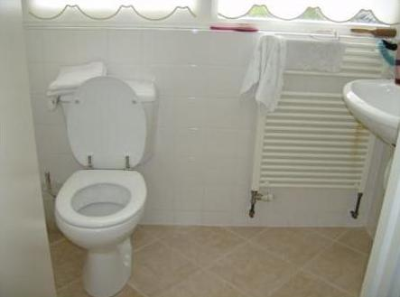Please honey, can we buy the house with the urine coloured stain on the toilets radiator?