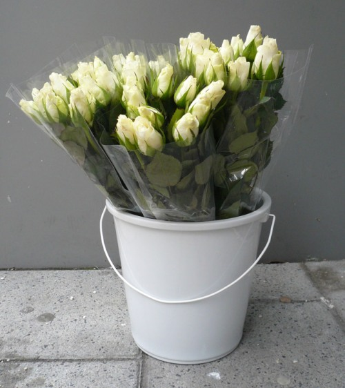 Tina Roeder bucket vase